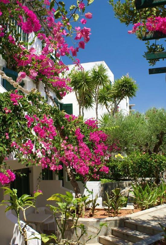 Villea Village Resort