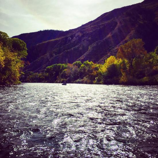 Emerald water anglers glenwood springs co top tips for Roaring river fishing hours