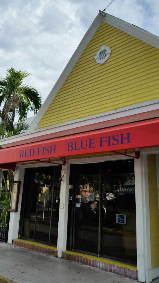 Key west ristoranti famosi tripadvisor for Red fish blue fish key west