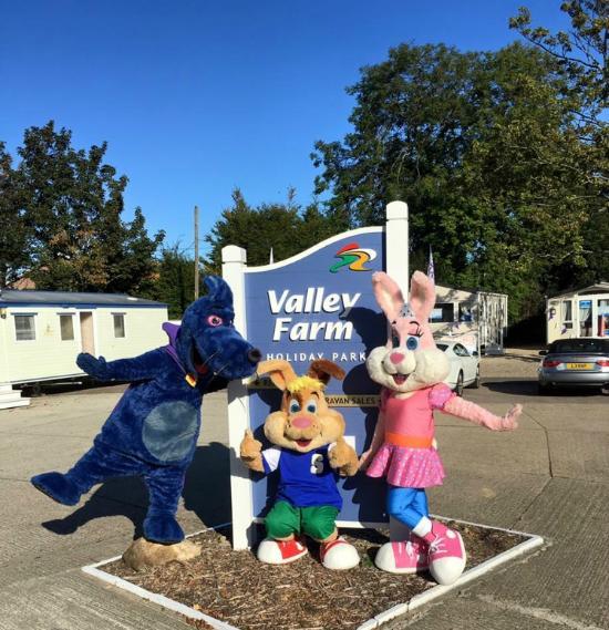 Valley Farm Holiday Park
