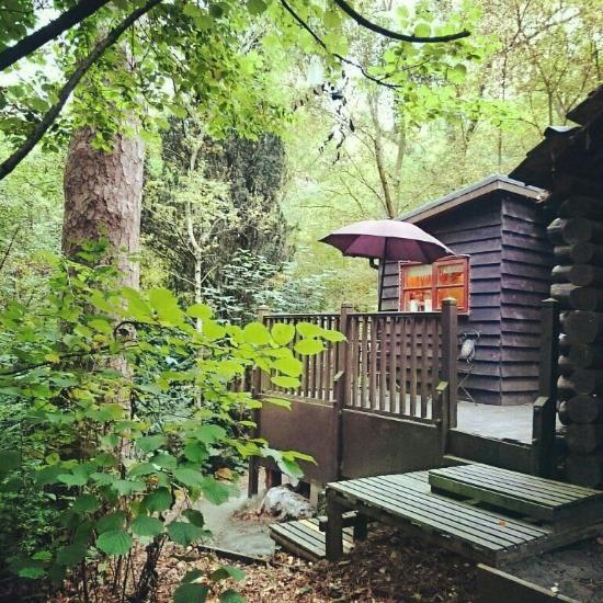 The Pinetum Lodge