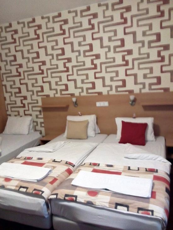 Hotel nivy for Designhotel 21 cakov makara