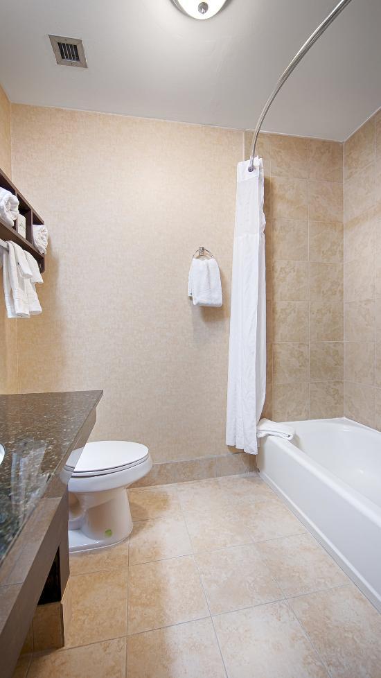 Best western albemarle inn updated 2017 hotel reviews for Best bathroom suites reviews