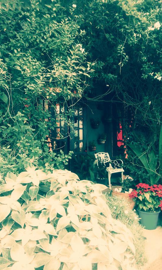 Heidi's Home