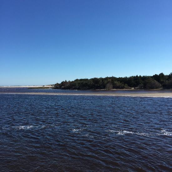 Masonboro Island Rentals