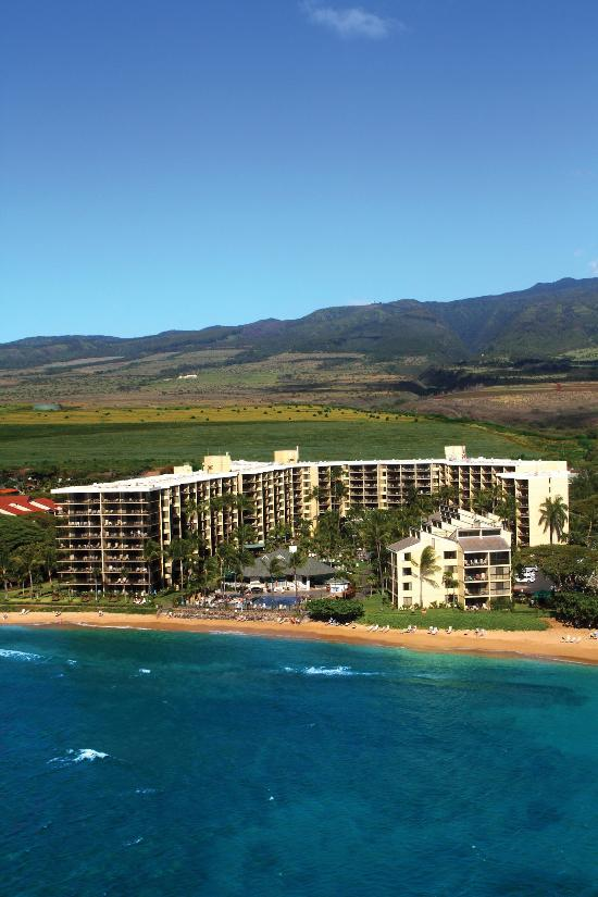 Best Rooms At Kaanapali Beach Hotel