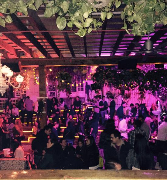 El Patio Wynwood Miami 2020 All You Need To Know Before You Go