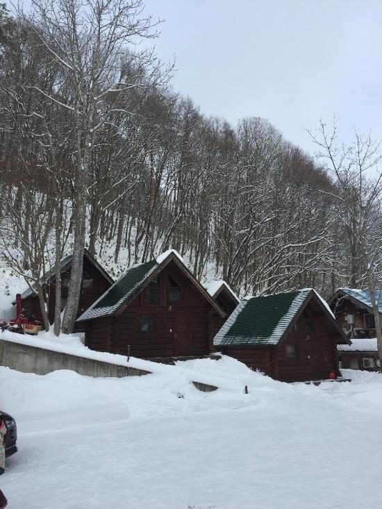Log Cottage Sakura