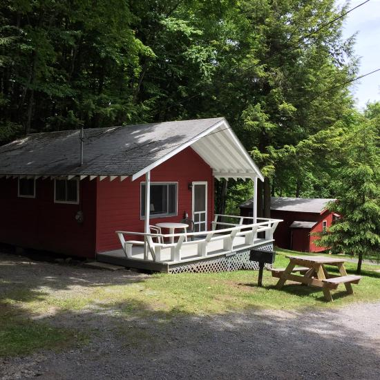 forest hill lodge cabins updated 2018 prices motel reviews rh tripadvisor com
