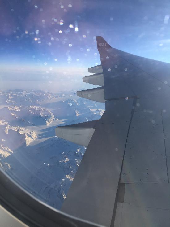 sas flights and reviews with photos tripadvisor rh tripadvisor com