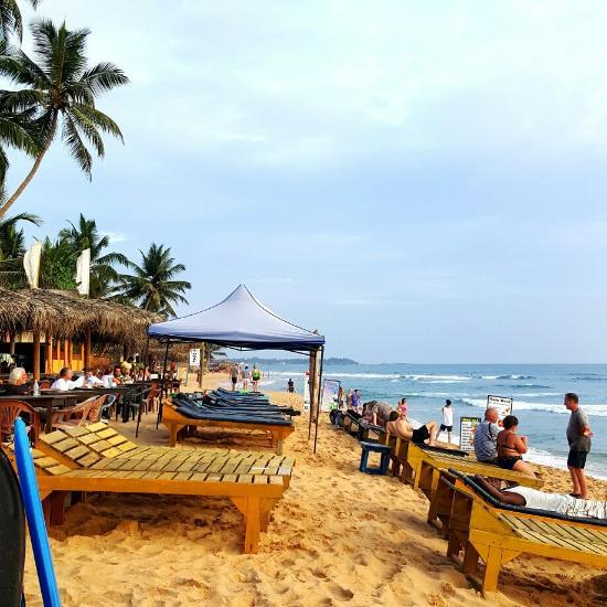 mambo s surfers paradise restaurant bar hikkaduwa restaurant rh tripadvisor com au