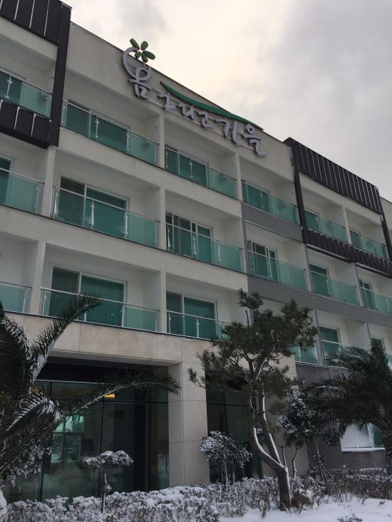 spring autumn resort prices pension reviews seogwipo jeju rh tripadvisor com