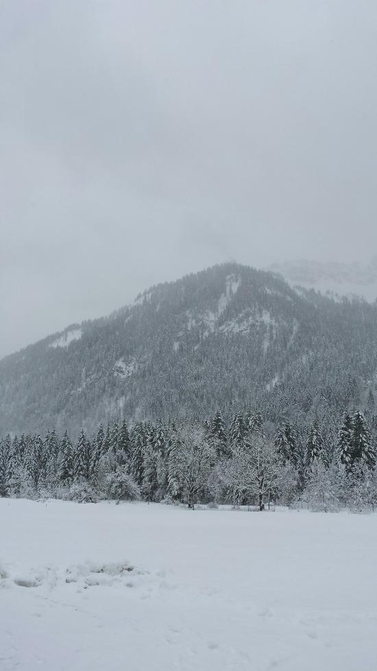 Alpengasthof Gruner Hut