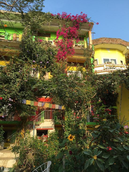 Zen Hotel