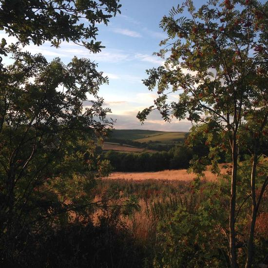 Springhill Farm Camping Whitby Campground Reviews