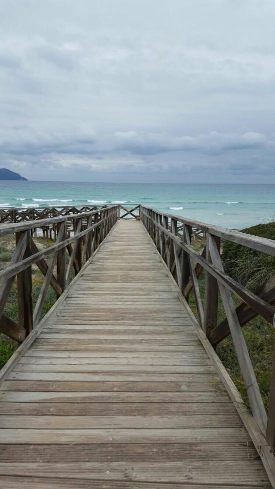 Eden Playa