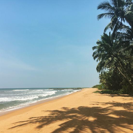 Coconut Bar Beach Resort Sri Lanka