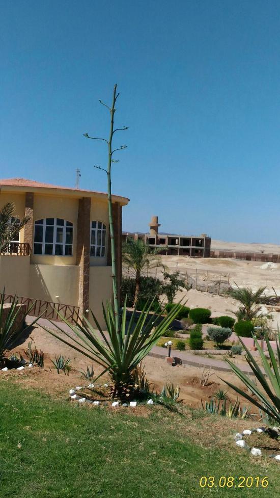 solitaire resort marsa alam reviews egypt tripadvisor rh tripadvisor com