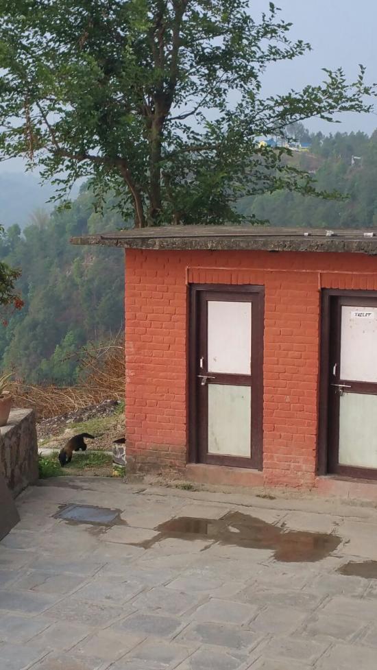 Panorama View Lodge