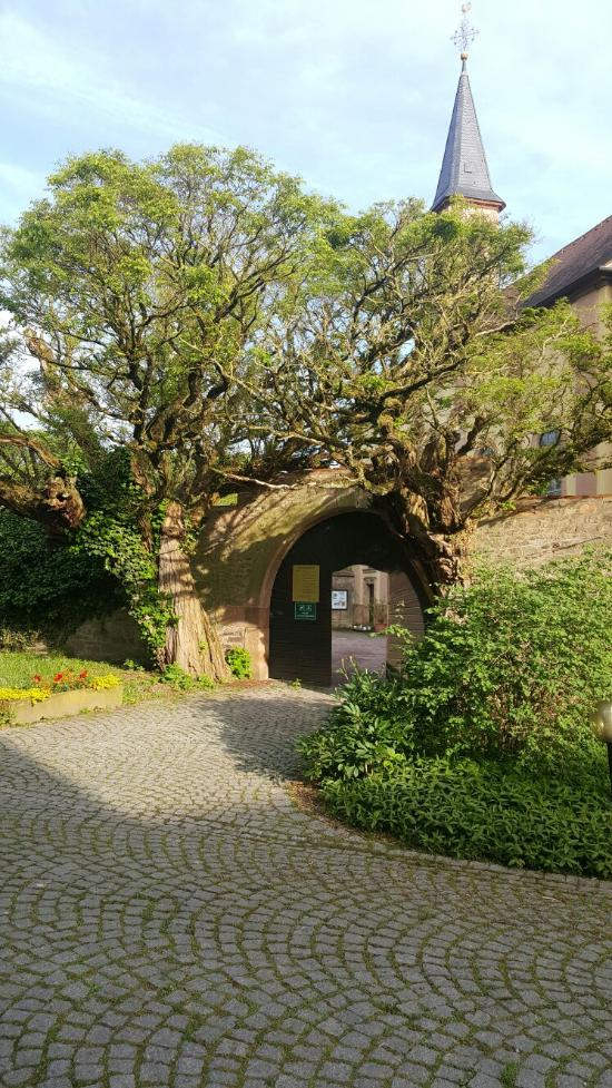 Schmerlenbach