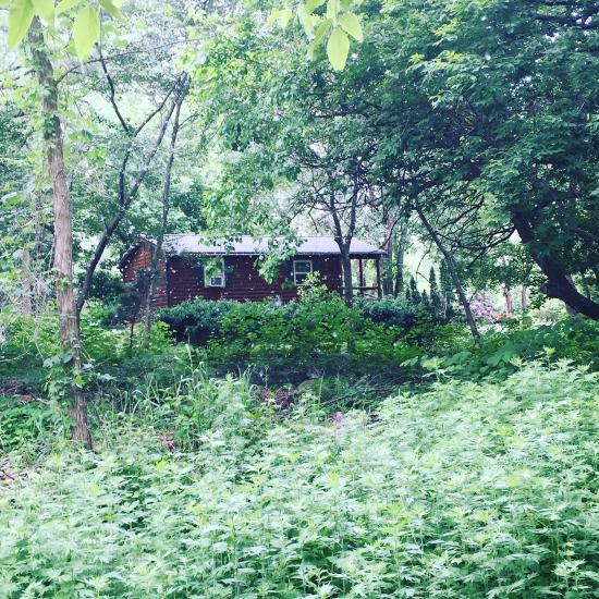 Alley Pond Environmental Center (Douglaston, NY): Top Tips