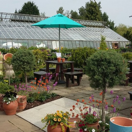 Places To Visit Coventry Uk: Mrs Bee's Potting Shed Cafe, Coventry