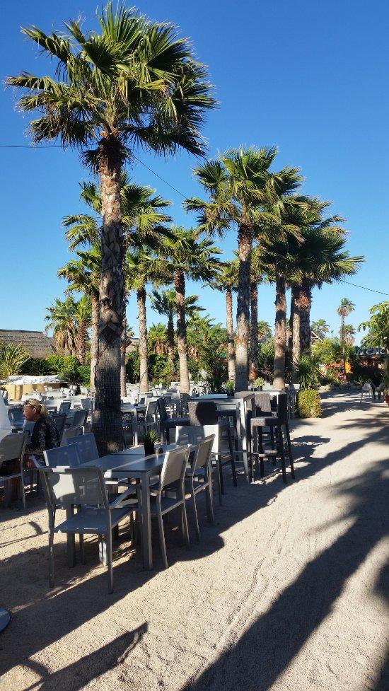 Best holiday resort updated 2017 campground reviews - Restaurant la table du mareyeur port grimaud ...