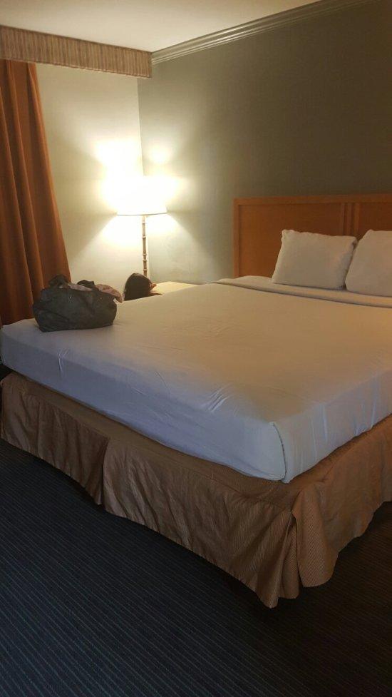 Star Hotel Inn & Suites