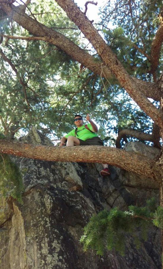 Gallatin Canyon Campground