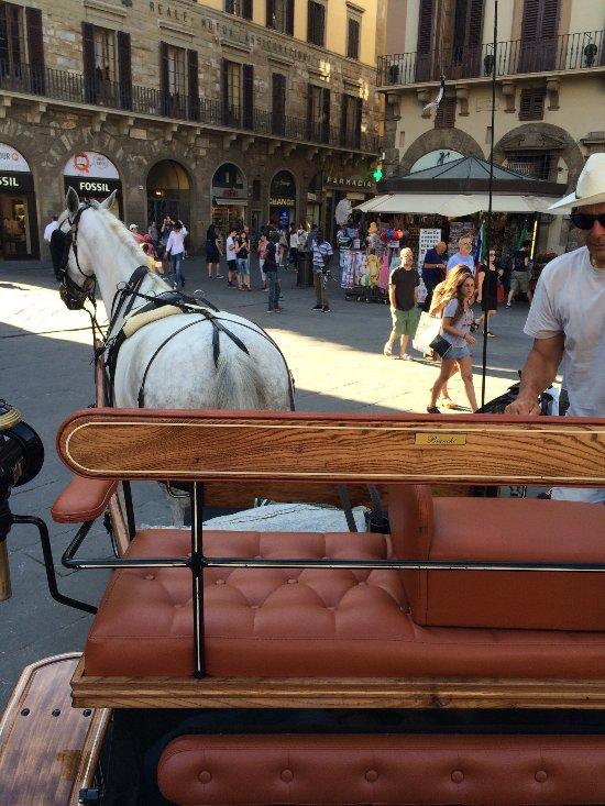 SOGGIORNO VENERE B&B (Firenze): Prezzi 2018 e recensioni