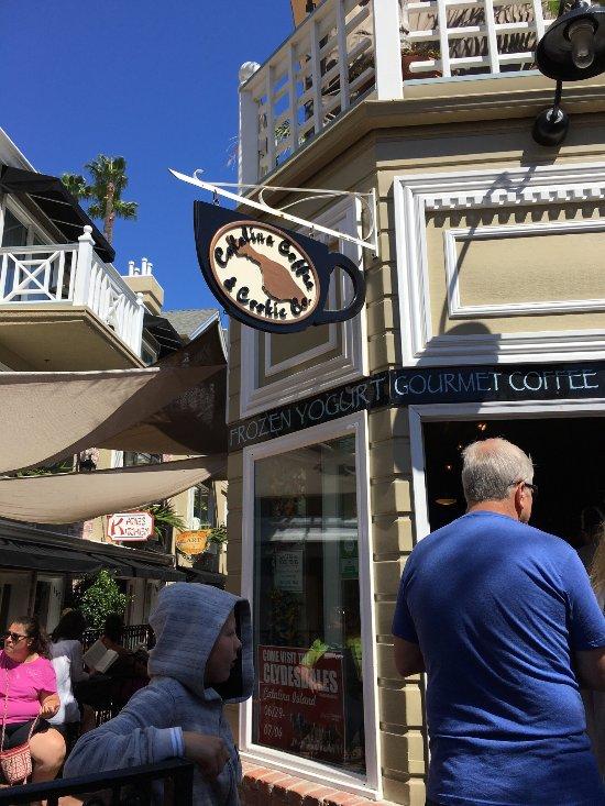 Best Coffee Catalina Island