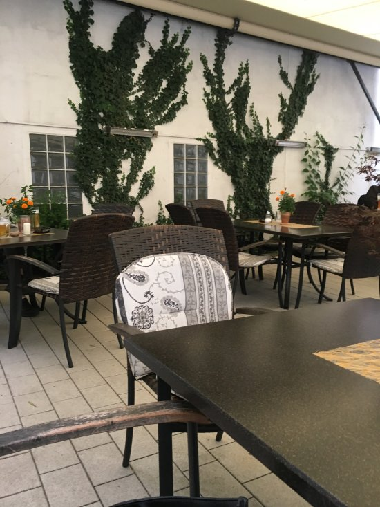 Gruener Baum Hotel & Gasthof