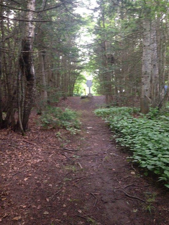 Riviere du Loup Municipal Campground (Camping Municipal de la Pointe)