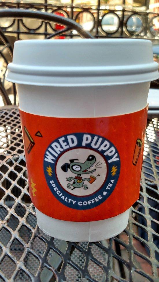 Wired Puppy, Boston - Back Bay - Restaurant Bewertungen ...
