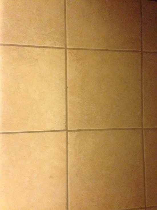 Mold on bathroom ceiling and dirty tile (that's filth, not a shadow)