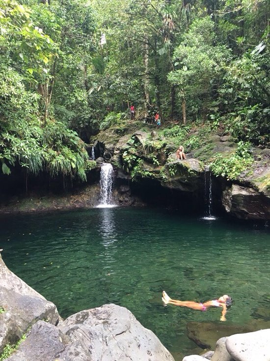 Things To Do in Guadeloupe National Park, Restaurants in Guadeloupe National Park