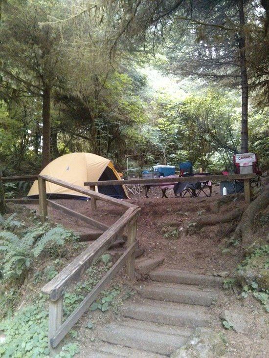 Cape Perpetua Campground