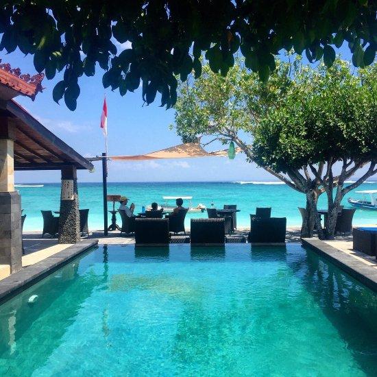 Best Hotels In Bali Tripadvisor: UPDATED 2017 Hostel Reviews