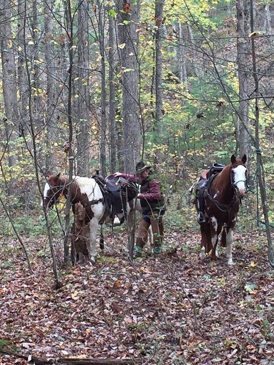 north mountain outfitter ranch reviews swoope va tripadvisor rh tripadvisor com