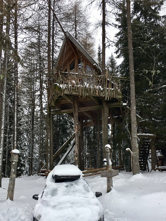Tree Top Huts