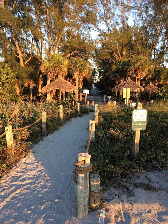 best loved 56802 6e3c4 Turtle Beach Campground Reviews   Deals, Sarasota, Florida