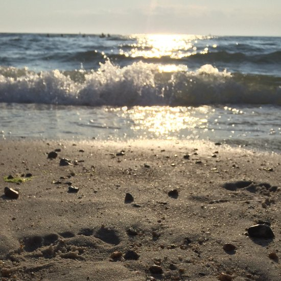 South Cape Beach State Park (Mashpee, MA): Top Tips Before