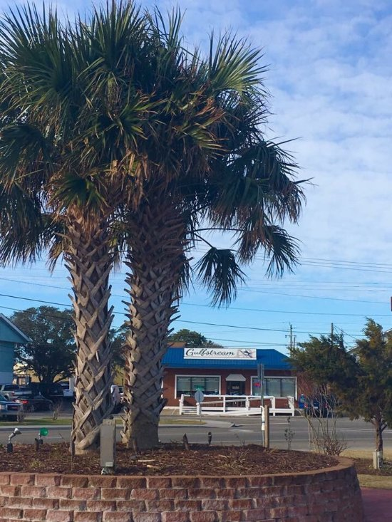 Gulfstream Restaurant Menu Carolina Beach