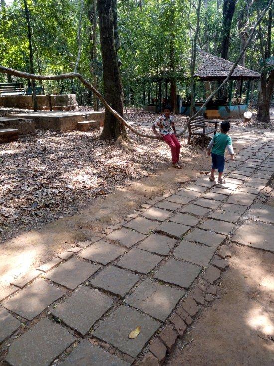 Seethanadi Nature Camp