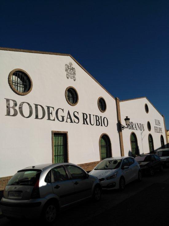 Bodegas Rubio La Palma Del Condado 2021 All You Need To Know Before You Go With Photos La Palma Del Condado Spain Tripadvisor