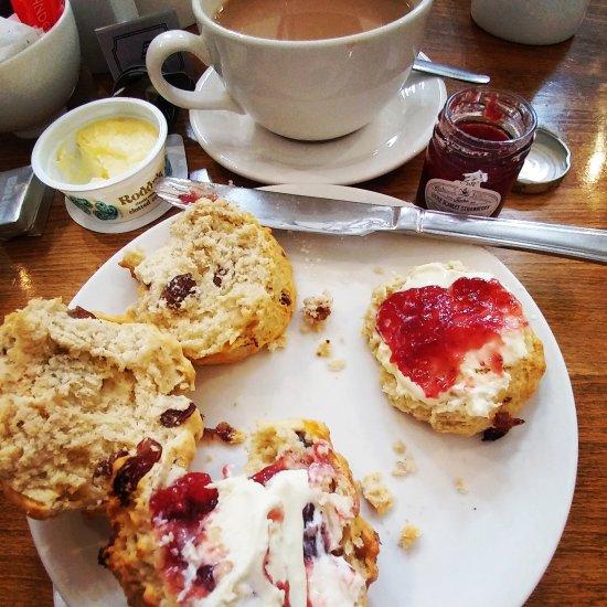 Tea Room Colchester Address