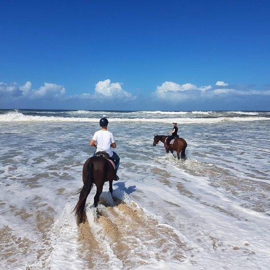 Beach Horse Riding South Coast Nsw