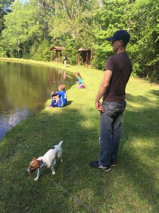 Woodsmoke Family Campground
