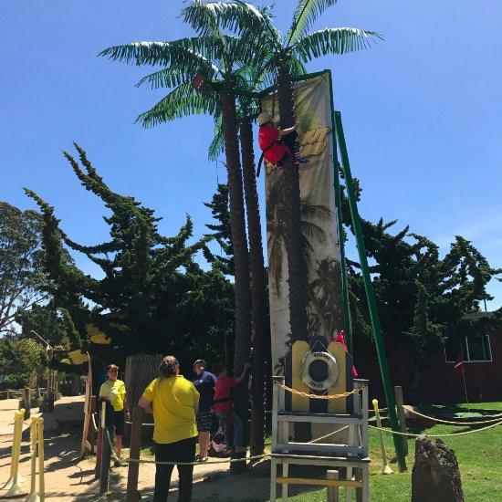 Santa Cruz Monterey Bay Koa Updated 2017 Campground Reviews La Selva Beach Ca Tripadvisor