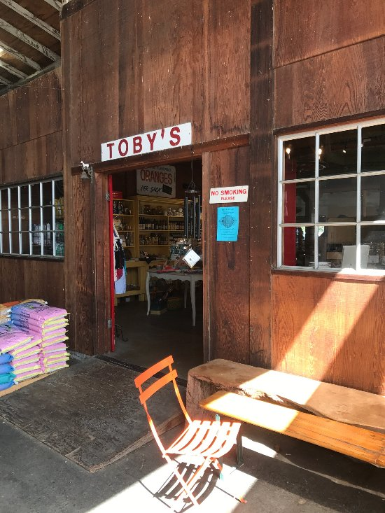 Toby S Coffeebar Point Reyes Station Restaurant Reviews